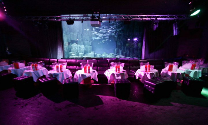 R veillon l 39 aquarium soir e aquarium s new year tour for Aquarium de paris jardin du trocadero